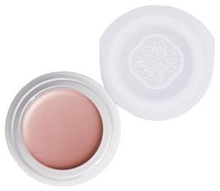 Shiseido Paperlight Cream Eye Color 6g OR707