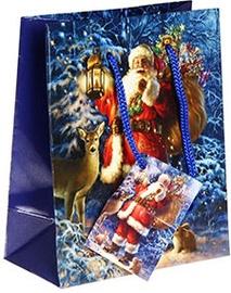 Verners Gift Bag Blue 389250