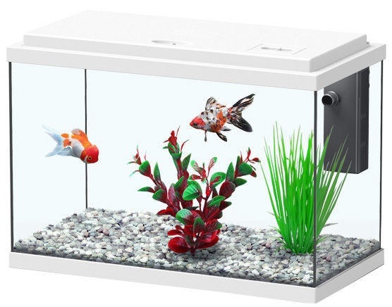 Aquatlantis Funny Fish 35 White