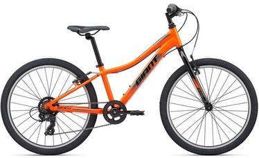 """Jalgratas Giant XtC Jr 24, oranž, 24"""""""