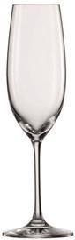 Schott Zwiesel Champagne Glass Elegance 228ml 2pcs
