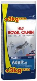 Royal Canin SHN Maxi Adult 18kg