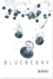 Herlitz Hardback Notebook A5 Fresh Fruit Blueberry