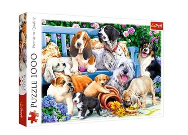 PUZLE 1000 PUPPIES 10556T