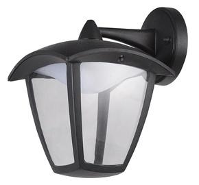 Tvirtinamas lauko šviestuvas Domoletti ELED-459DN, 7W, LED