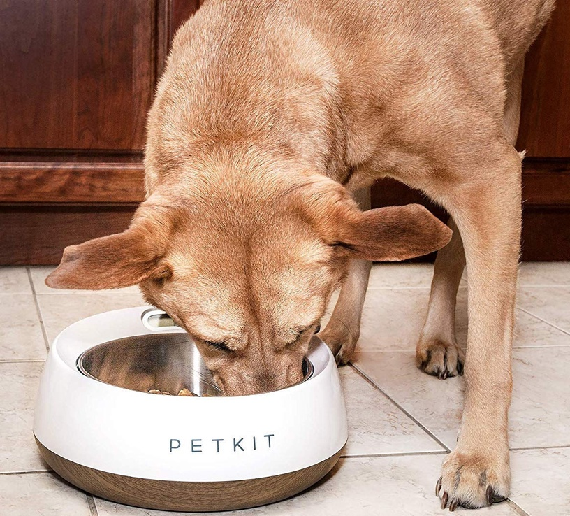 Petkit Smart Pet Bowl Fresh Metal Wood