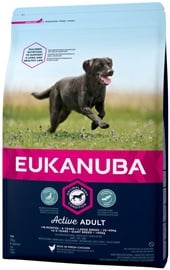 Eukanuba Adult Large Breed Chicken 15kg