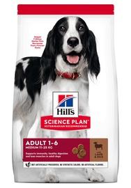 Sausas ėdalas šunims Hill's SP M su ėriena ir ryžiais, 2.5kg