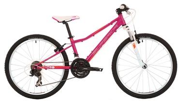 "Superior Modo XC 24"" Pink 17"