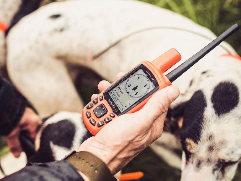 Устройство слежения за животными Garmin Alpha 50 EU