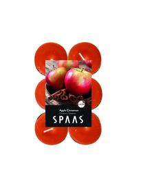 Ароматическая свеча Spaas Apple&Cinnamon, 4.5 h