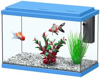 Aquatlantis Funny Fish 35 Blue
