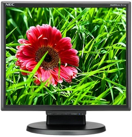 Monitorius NEC E171M Black