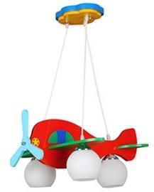 Verners Plane 836