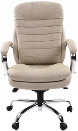 Chairman Executive 795 White