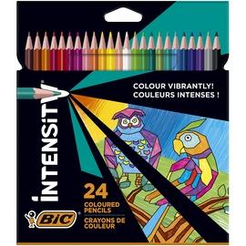 Цветные карандаши Bic, 9641481, 24 шт.