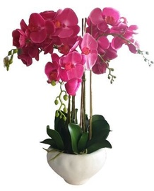 MN Artificial Flowers Orchid 3370060