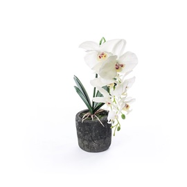 SN Artificial Orchid Flower Pot RU-5750 48cm