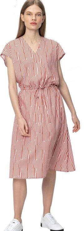 Audimas Shirt Style Dress Redwood XL