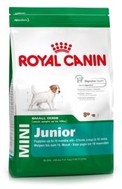 Sausas ėdalas šunims Royal Canin Mini Junior, 2 kg