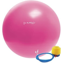 HMS Gym Ball YB01 55cm Pink