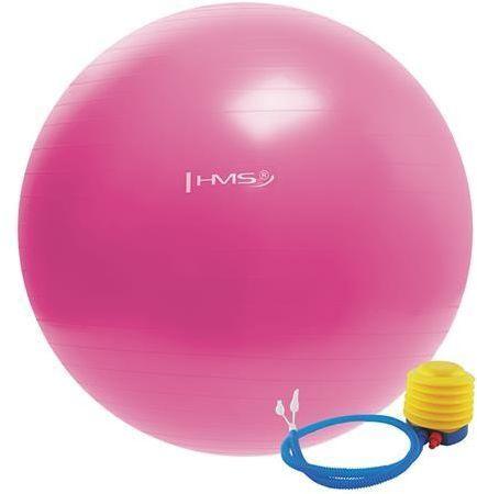 HMS Gym Ball YB01 55cm Pink