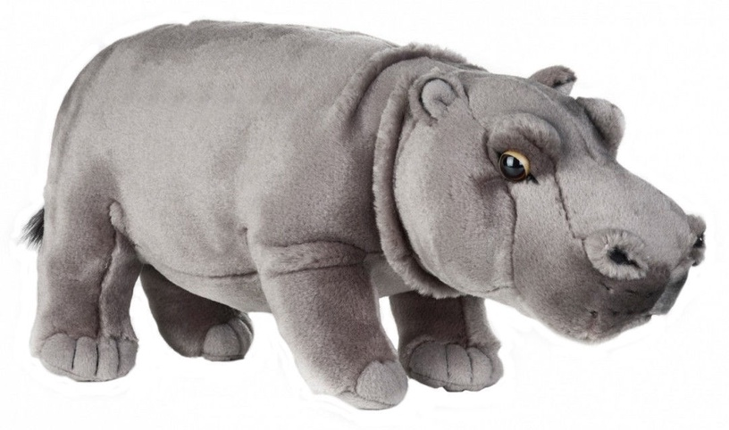 Dante National Geographic  Hippo 31cm