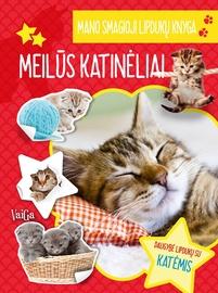 Knyga Mano smagioji lipdukų knyga. Meilūs katinėliai