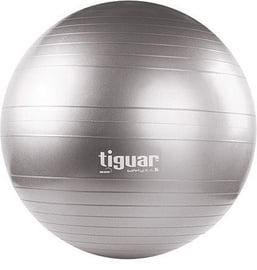 Tiguar Body Ball Safety Plus 65cm Gray