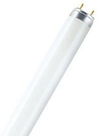 Osram Lumilux T8 Lamp 10W G13