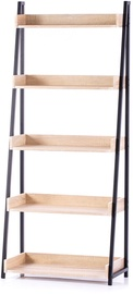 Homede Trax Rack Maple 67x32x158cm