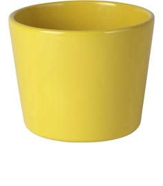 Lillepotiümbris Priimula 12x9cm kollane