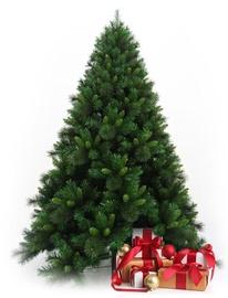 Kalėdinė eglutė Christmas Touch Klasika, 150 cm aukščio