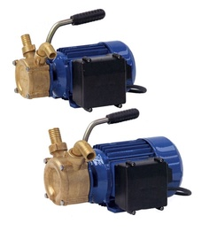 Elektrinis vandens siurblys Speroni PM 20, 500 W