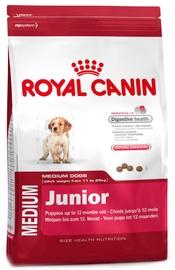 Royal Canin SHN Medium Junior 1kg