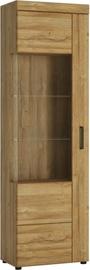 Meble Wojcik Cabinet 1D CNAV02L