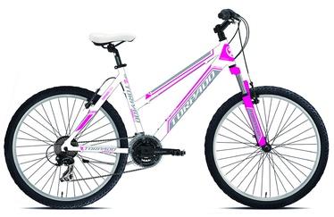 Moteriškas dviratis Storm