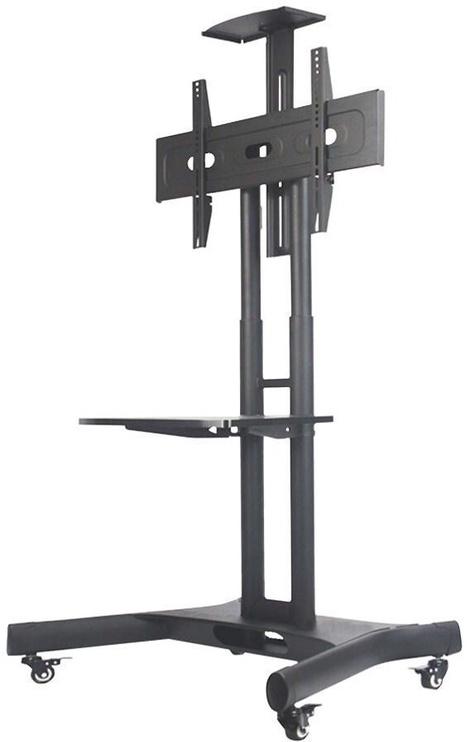 NewStar Floor Stand NM-M1700BLACK