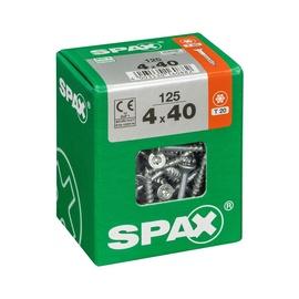 PUIDUKRUVI SPAX TX 4X40    125 TK