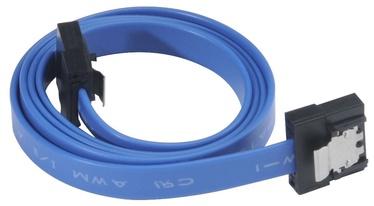 Akasa Cable SATA / SATA Blue 0.5m