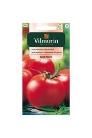Tomātu sēklas Vilmorin Tomato Saint 7801