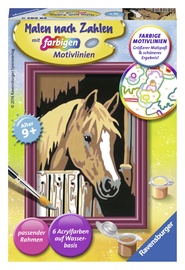 Ravensburger Painting By Numbers Horse 296859