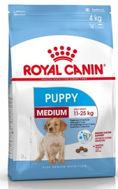 KOERATOIT ROYAL CANIN MEDIUM JUNIOR 4KG