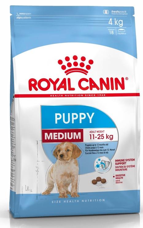 Sausas ėdalas šunims Royal Canin Medium Junior, 4 kg