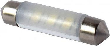Bosma LED Canbus 6SMD SV8.5 41mm 12V Light Bulb