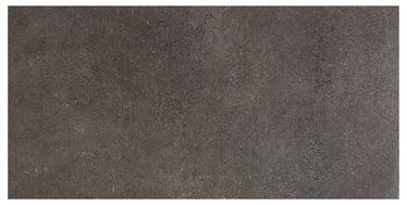 Akmens masės plytelės Daisen Antractic Rect, 60 x 30 cm