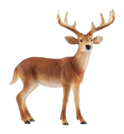 Rotaļlietu figūriņa Schleich White Tailed Buck 14818