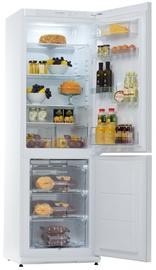 Холодильник Snaigė RF34SM-S0002F0731Z18XSNBX, морозильник снизу