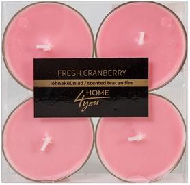 Home4you Teacandles Maxi Chic Fresh Cranberry 4pcs