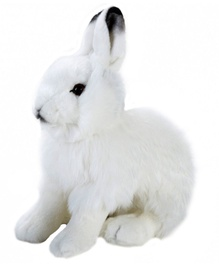 Dante National Geographic Hare 25cm